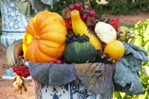 Осенние хлопоты в саду