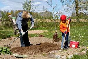 Апрель садовода и огородника: работы на участке