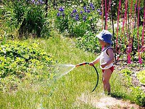 Сад и огород в июле: работы на участке