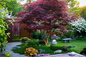 Дизайнерский сад в стиле модерн