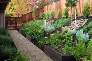 Сад на склоне своими руками: варианты благоустройство участка